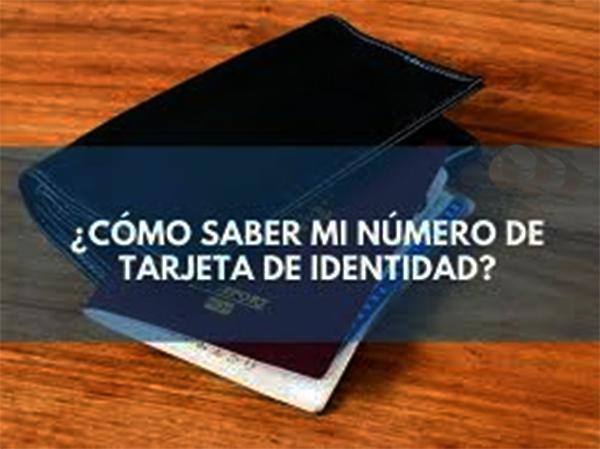 ¿Cómo sé mi número de tarjeta de identidad?