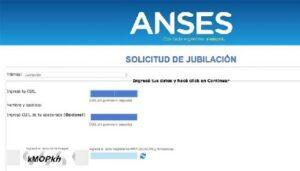 Resumen del formato de información 6.258 ANSES