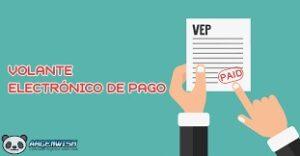 Imagen VEP