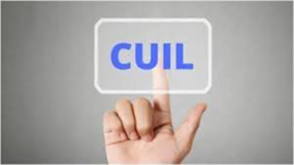 Certificado Cuil