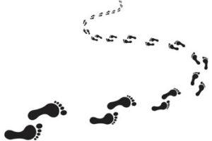 Módulo 4 pasos 03