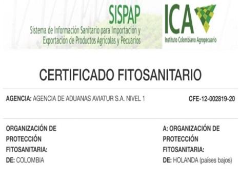 Certificado fitosanitario 7