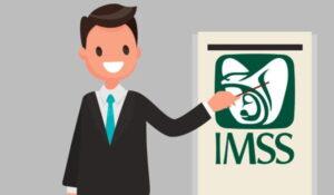 INFORMACIÓN IMPORTANTE IMSS
