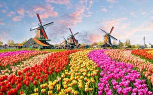 Viaje a Holanda Conclusión