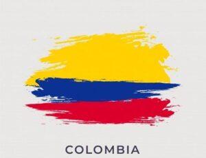 Viaje a Colombia Conclusión NR
