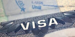 Visa Intro americana