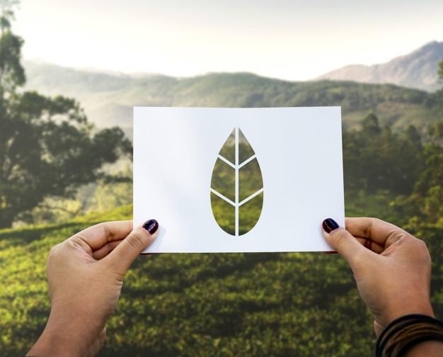 cómo tener una licencia ambiental