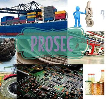 Cómo funciona el programa PROSEC