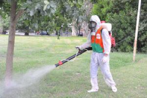 Cómo se verifican los parásitos de fumigación certificados