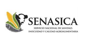 Descubra cómo solicitar el certificado de salud de acuicultura SENASICA para la importación