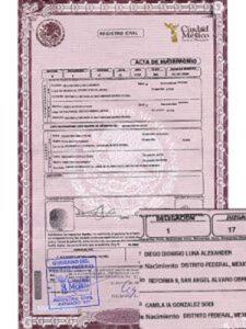 Certificado de etiqueta introductoria única