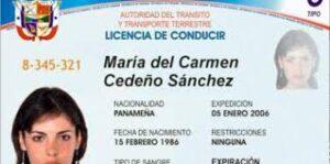 Obtenga más información sobre los requisitos para obtener una licencia por primera vez