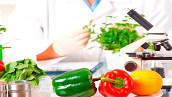 Certificado de seguridad alimentaria