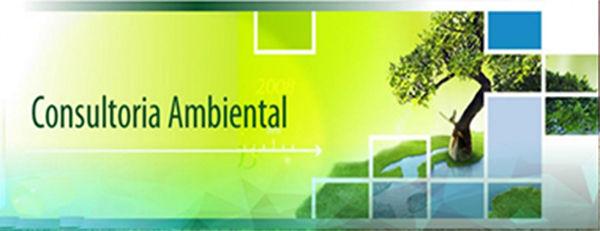Forma de hoja ambiental de Bolivia